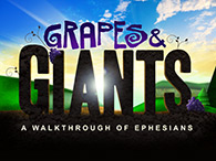 Grapes & Giants